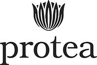 Protea-Logo